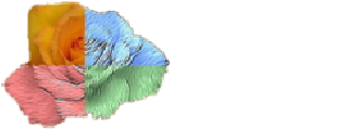 MVRLab, University of Alicante